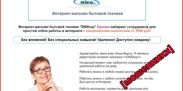 Интернет-магазин бытовой техники DNS Shop набирает сотрудников — отзывы 01